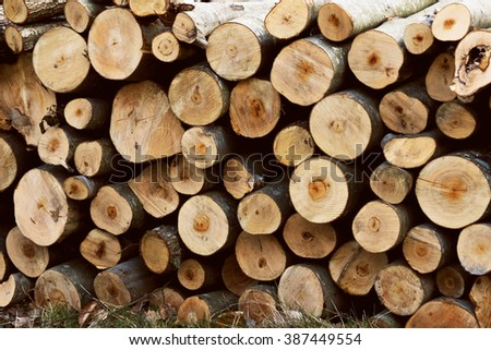 Wood logs texture / background - stock photo
