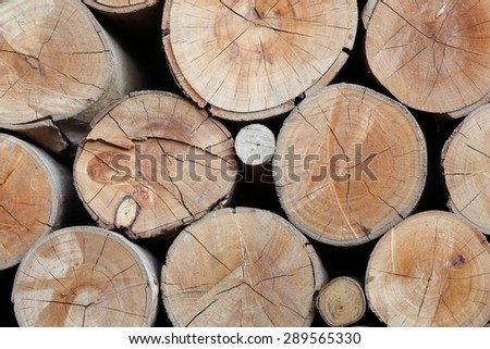 wood logs texture of aged annual rings - stock photo