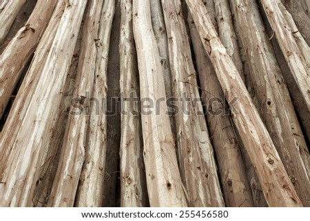 Wood materials, lumber industry - stock photo