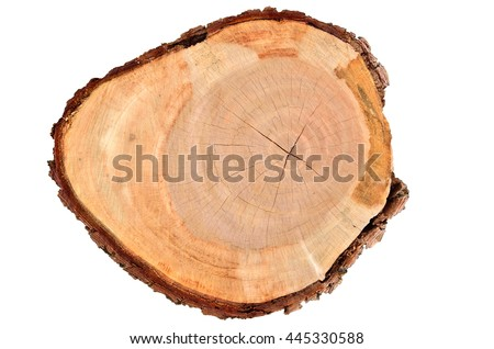 wood on white background