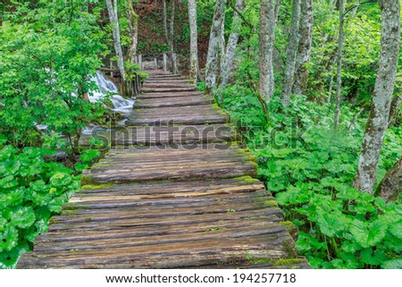 Wood path in the Plitvice Lake in Croatia