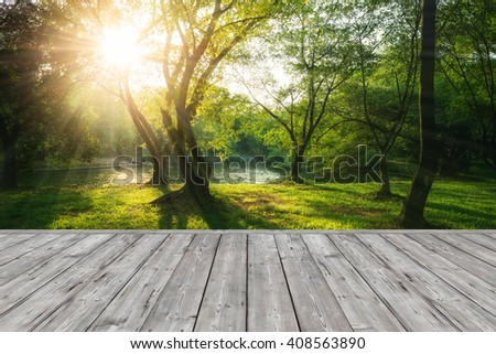 Wood plank on sunset and forest background