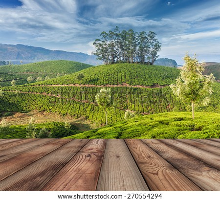 Wood planks floor with  green tea plantations in background. Munnar, Kerala, India - stock photo