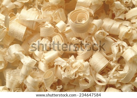 wood shaving, texture of natural material - stock photo