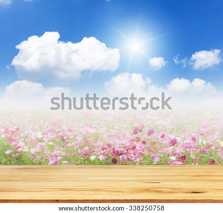 Wood table top on unfocused cosmos flowers and sky background -  - stock photo