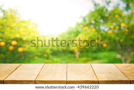 Wood table top with blur of orange garden in the morning.For montage product display or design key visual layout - stock photo