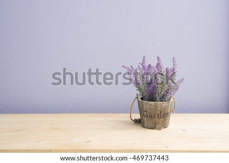 Wood table with purple lavender flower on flower pot and  purple cement wall, Left copy space area.