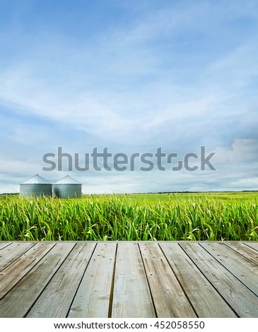 Wood table with tall grass and farmland in background - stock photo