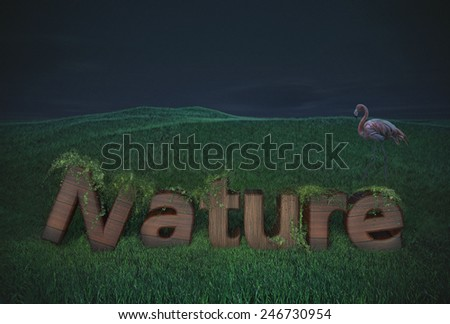 wood text grass font template typography logos nature letters natural brown model  - stock photo
