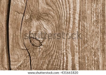wood texture background. wood background. wood background. wood background. wood background. wood background. wood background. wood background. wood background. wood background. wood background. wood - stock photo