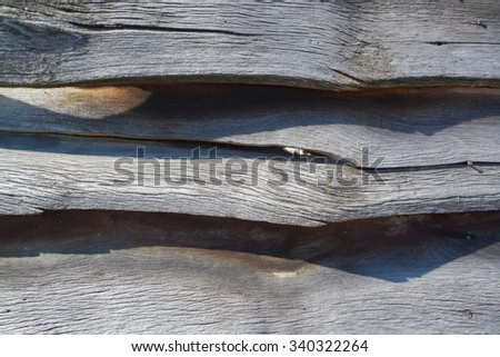 Wood Texture eaten by worms.Woodworm - stock photo