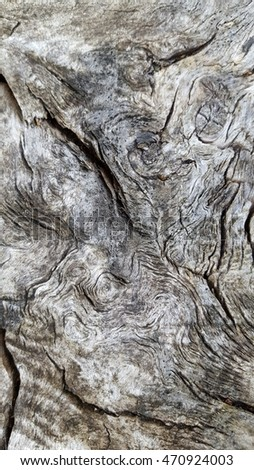 Wood texture in close view with cracks