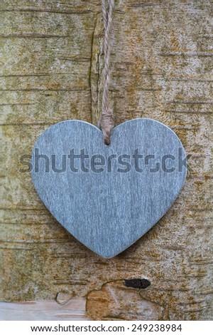 wood texture love heart on tree trunk  - stock photo