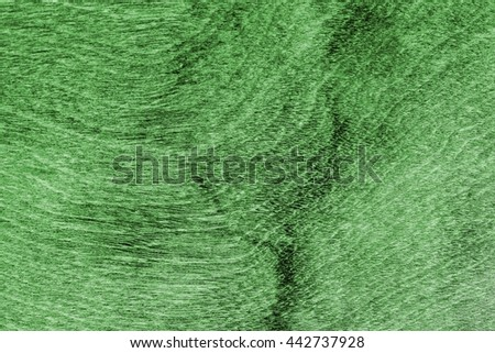 Wood texture with natural pattern/Tree timber texture for background./ Green wood texture with natural pattern. - stock photo