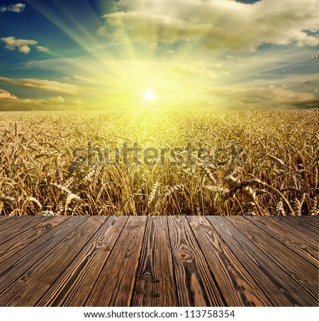 wood textured backgrounds in a room interior on the meadow and field backgrounds - stock photo
