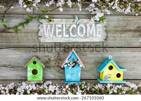Wood welcome sign by colorful yellow and blue birdhouses and spring tree blossoms hanging on rustic wooden background - stock photo