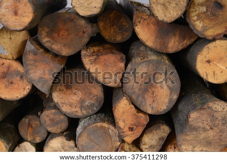 Wood. Wood texture background.