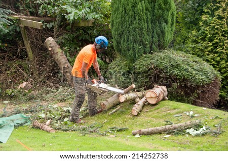 Woodcutter using a chain saw to cut the tree trunk into logs - stock photo