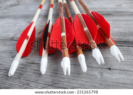 Wooden archery homemade arrows with plastic nocks and red  natural feathers closeup - stock photo