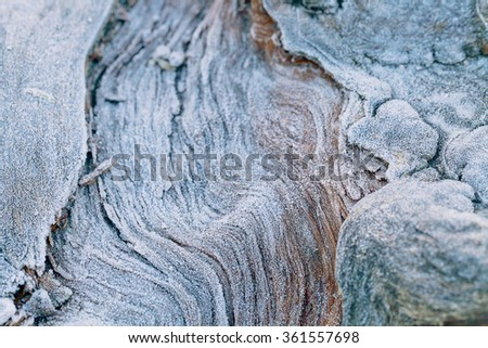 Wooden background texture covered hoarfrost in winter