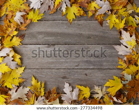 Wooden background with a Leaf border frame - stock photo