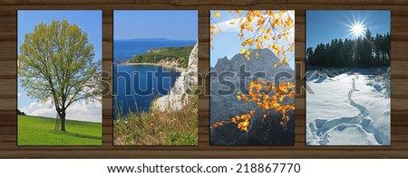 wooden background with four seasons landscape. lime tree in spring, coastal landscape, mountain and autumnal beech leaves, wintry forest - stock photo