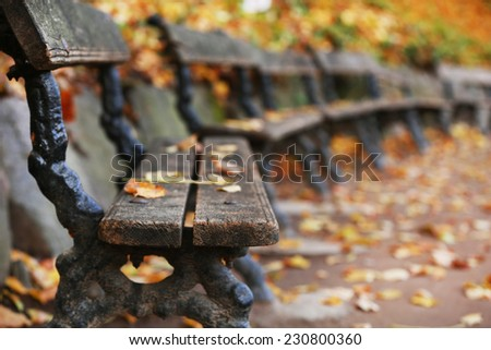 Wooden bench at park in autumn time - stock photo