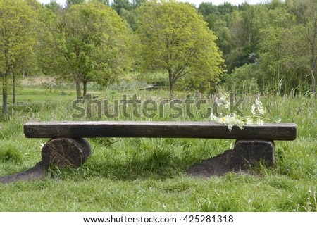 Wooden bench in the parc with trees and field flowers as buttercups, daisies,whistling herb,and fern in the spring