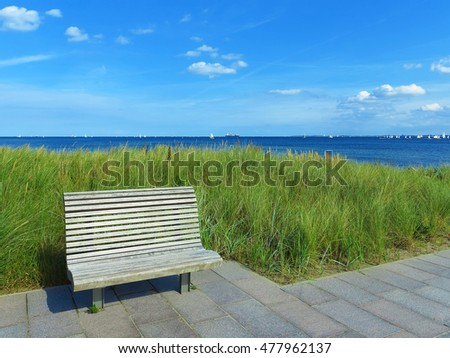 wooden bench, lyme grass and view to the sea