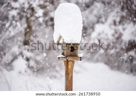 Wooden bird feeder with a tall cap of snow standing in a winter garden with snow-covered trees and falling snowflakes in a winter season or weather concept. - stock photo
