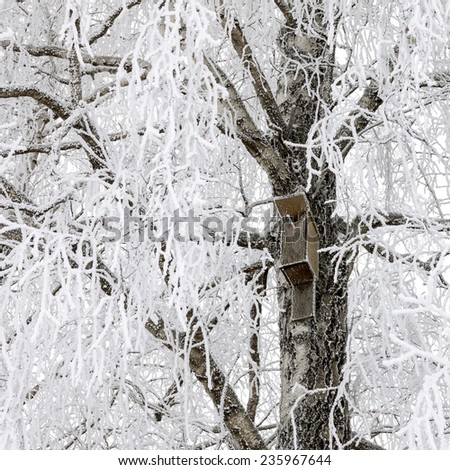 Wooden birdhouse hanging on snowy tree at winter - stock photo