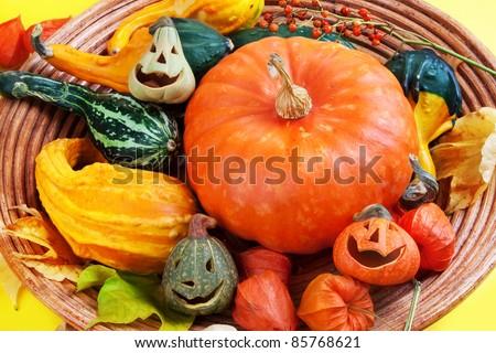 Wooden bowl full of halloween pumpkins, sill life. - stock photo