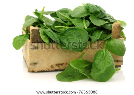 wooden box with freshly harvested spinach leaves on a white background