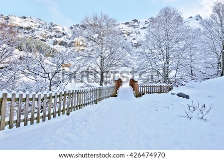 Wooden Bridge across Le Valentin river In Gourette village in winter. Bearn, Pyrenees, Aquitaine, France