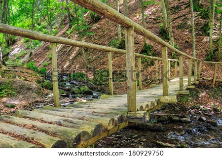 wooden bridge disappearing into the depths of forest