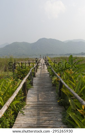 wooden bridge in nature trail  - stock photo