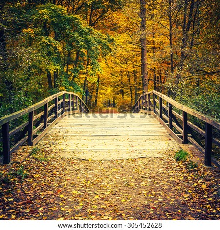 Wooden bridge in the autumn forest - stock photo