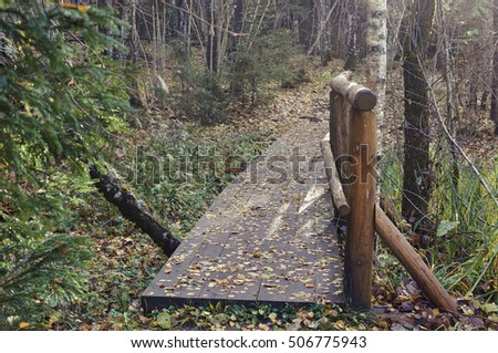 wooden bridge in the forest and park in the autumn