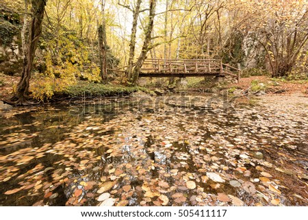 Wooden bridge in the forest. Autumn colorful landscape. Strandja mountain, Bulgaria during autumn. Beautiful view of a river in the forest.