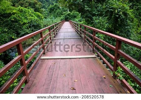 Wooden bridge in tropical rain forest. - stock photo