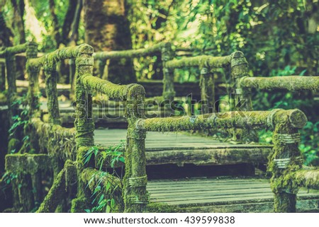 Wooden bridge in tropical rain forest (Vintage filter effect used) - stock photo