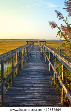Wooden bridge leading into the lake - stock photo