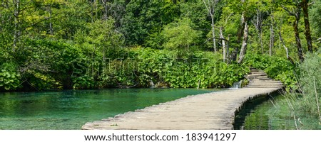 Wooden Bridge over a Pond in Plitvice National Park