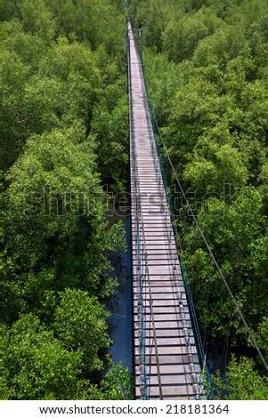 Wooden Bridge pathway . - stock photo