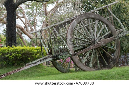 Wooden cart stands on green herb in park