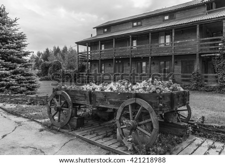 wooden cart with flowers . Black and white photography.