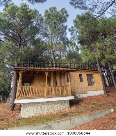 Wooden cottage in the pine forest