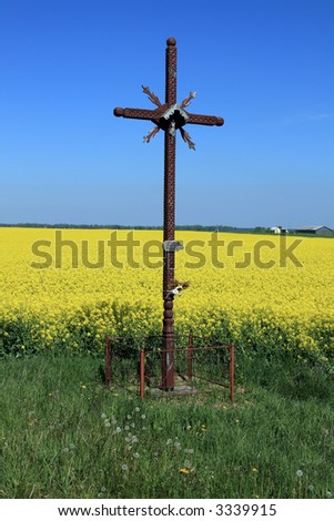 Wooden Cross at canola field