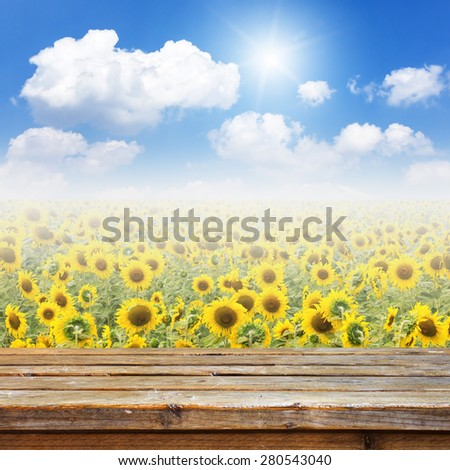 Wooden deck table on sun flowers fields background - stock photo