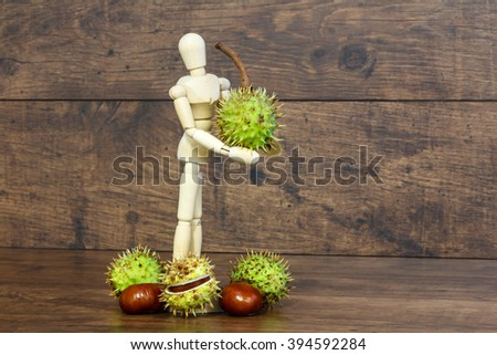 Wooden doll holds chestnut in her hands - stock photo